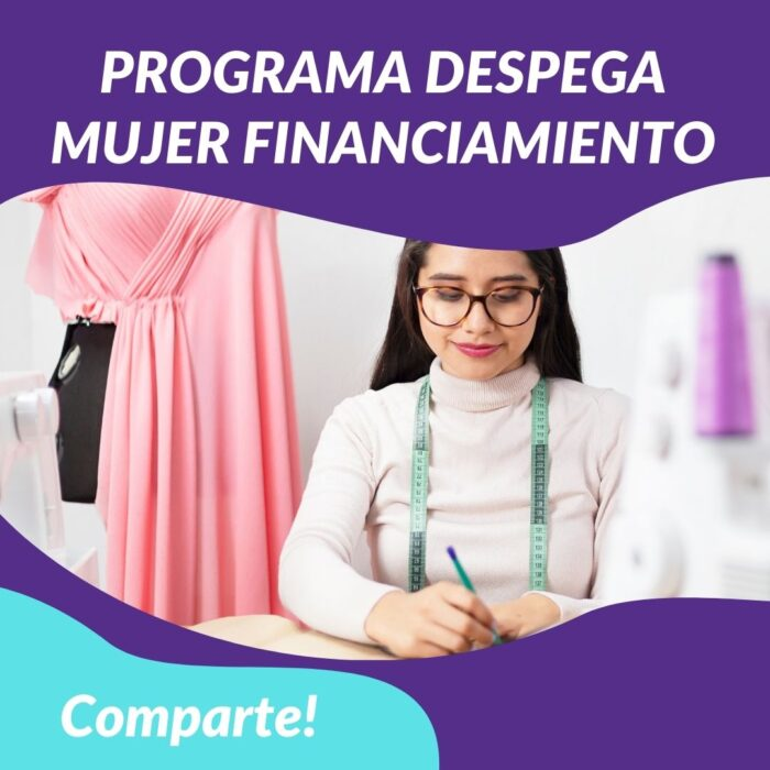 Despega Mujer: Programa para apoyar el emprendimiento femenino