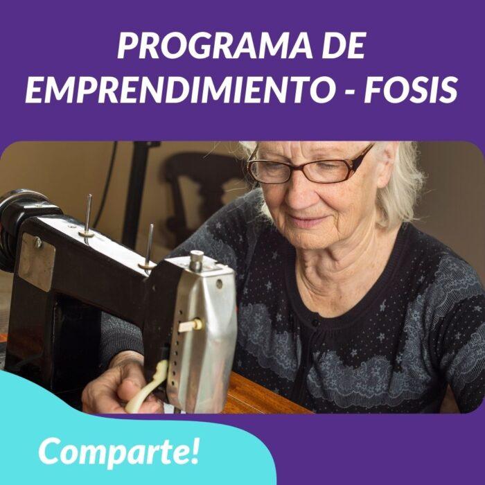 Programa de Emprendimiento – FOSIS
