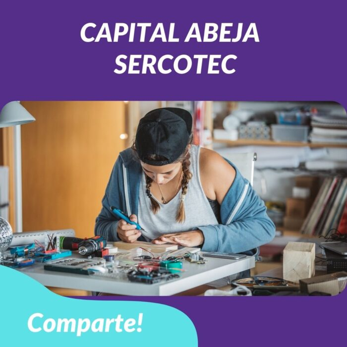 Capital Abeja – Financiamiento